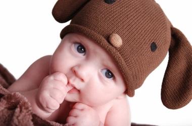 Fakta Bayi Usia 6-12 Bulan